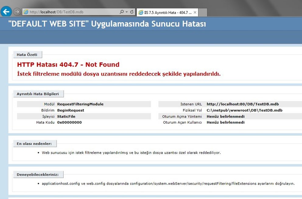 IIS Dosya Ulaşım Problemi (Http Hatası 404.7 – Not Found) Çözümü