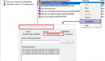 SQL Server Master Veritabanın Taşınması İşlemi