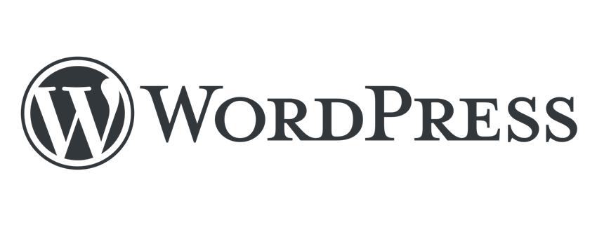 WordPress Site Kurulumu İçin Sadeceon.com' a Gelin!