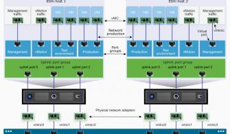 vCenter Standard Switch Özellikleri